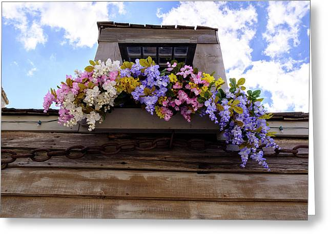 Flowers On A Rooftop Balcony In Saint Augustine Florida Greeting Card