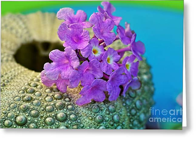 Flowers On A Shell By Kaye Menner Greeting Card by Kaye Menner