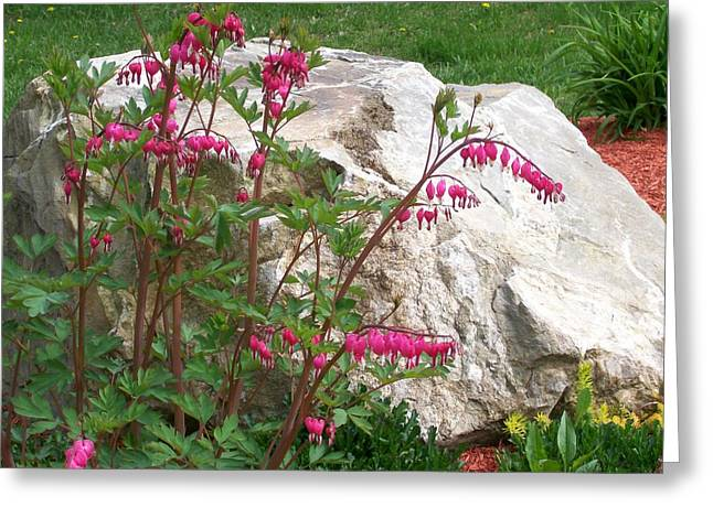 Greeting Card featuring the digital art Flowers On The Rocks by Barbara S Nickerson