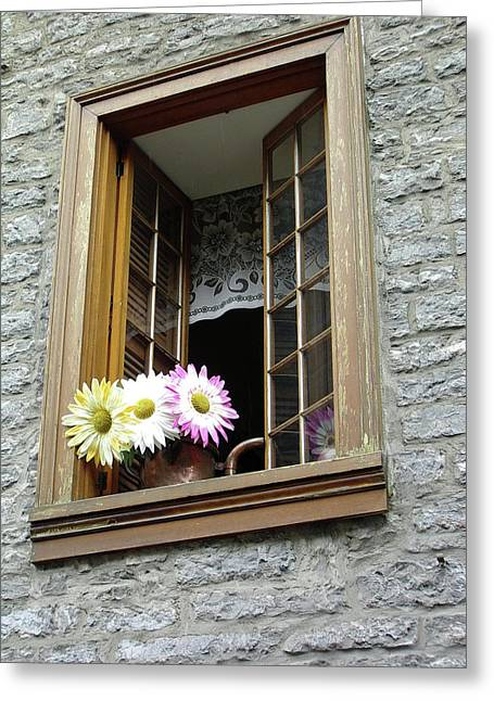 Greeting Card featuring the photograph Flowers On The Sill by John Schneider