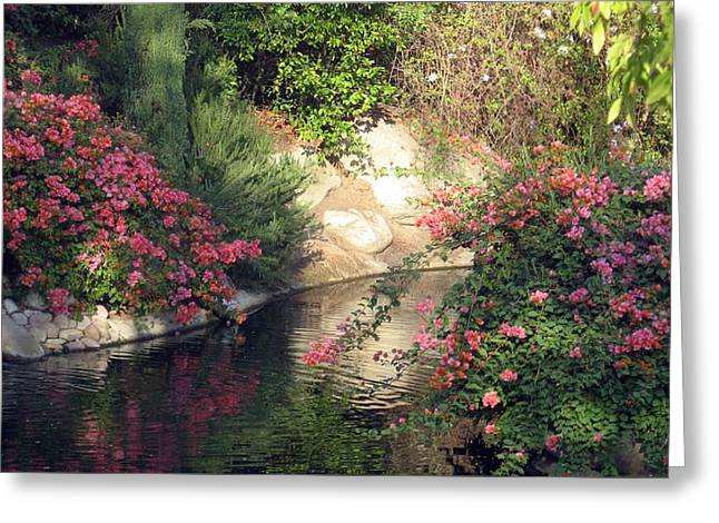 Greeting Card featuring the photograph Flowers Over Pond by Amanda Eberly-Kudamik