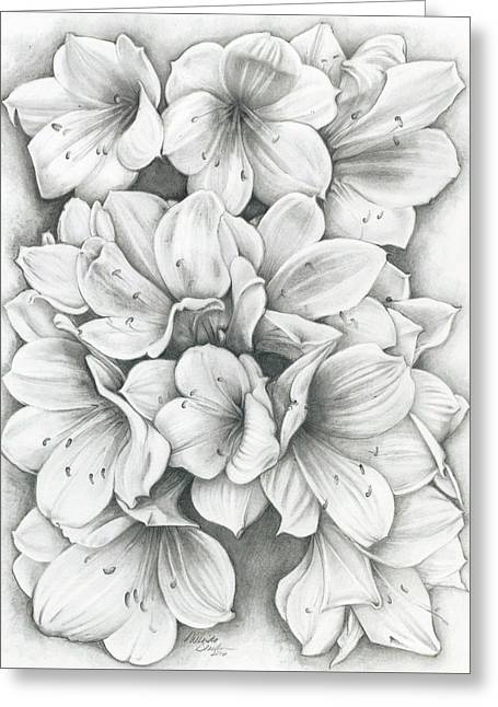 Clivia Flowers Pencil Greeting Card