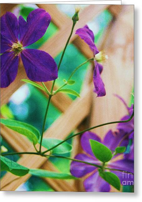 Greeting Card featuring the painting Flowers Purple by Eric  Schiabor
