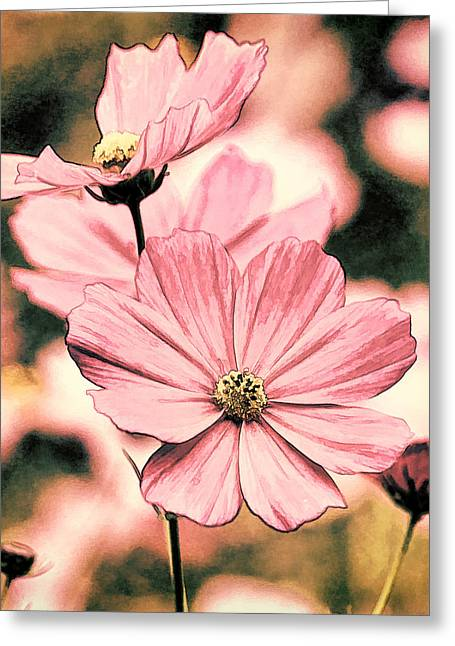 Flowers - Retro Cosmos Greeting Card by HH Photography of Florida