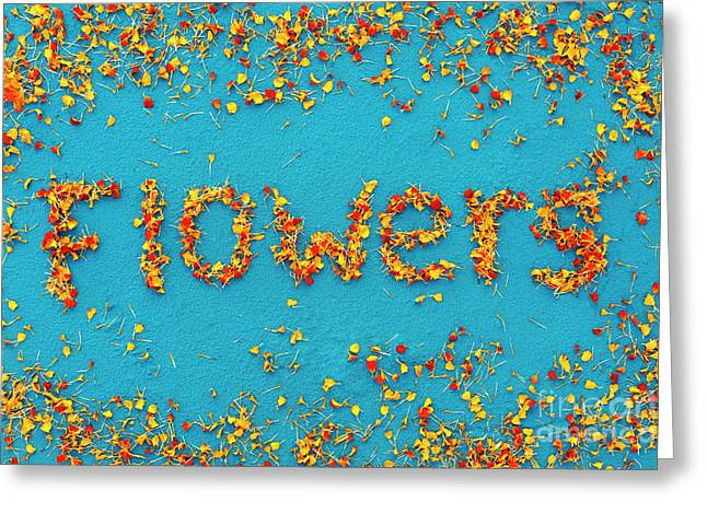 Flowers Greeting Card by Tim Gainey