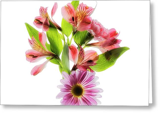Flowers Transparent  2 Greeting Card by Tom Mc Nemar