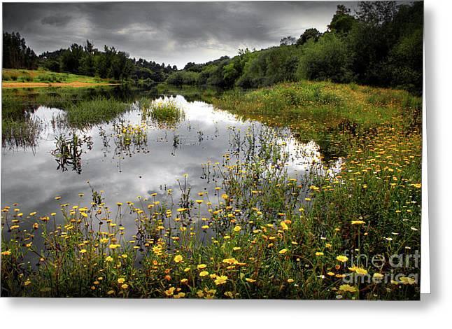 Flowery Lake Greeting Card