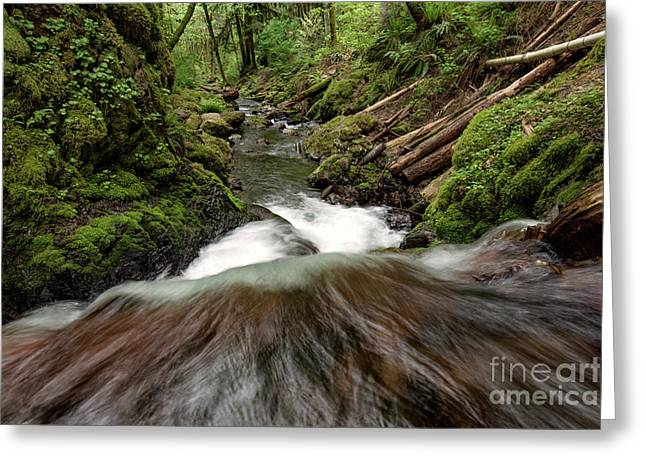 Flowing Downstream Waterfall Art By Kaylyn Franks Greeting Card