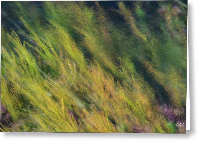 Flowing Textures Greeting Card by Leland D Howard