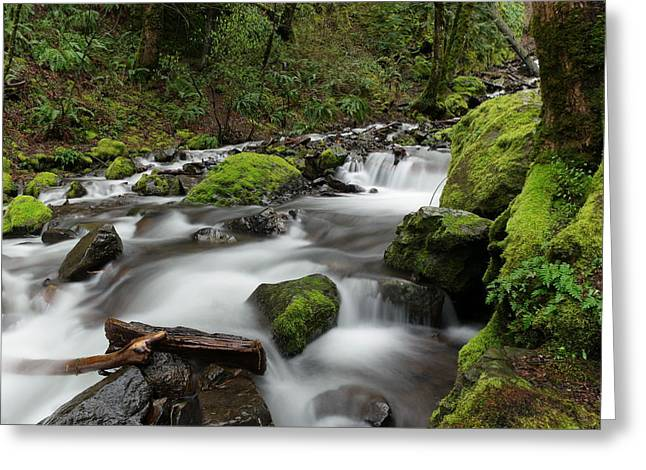 Flowing Through The Moss And Rocks Greeting Card