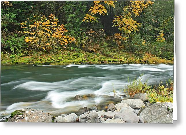 Flowing Umpqua River Greeting Card
