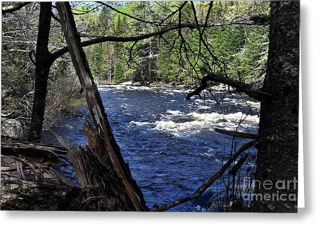 Flowing Wild, Free And Clean Greeting Card