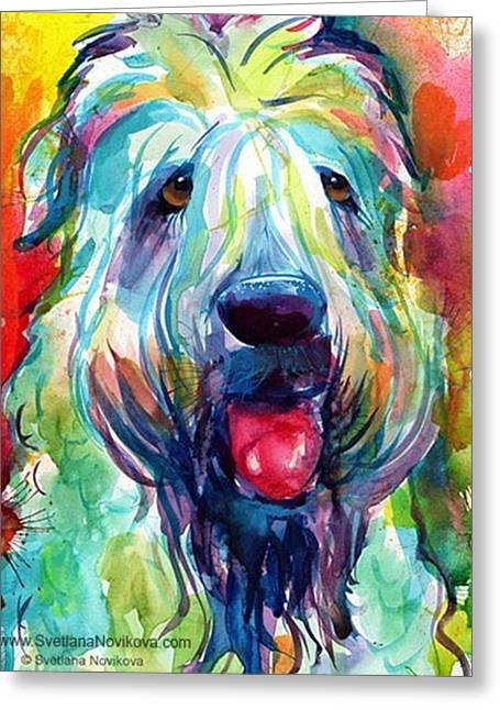 Fluffy Wheaten Terrier Portrait By Greeting Card