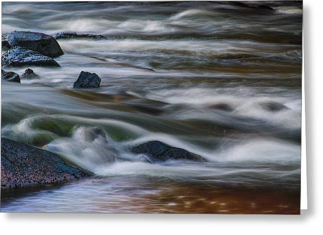 Greeting Card featuring the photograph Fluid Motion by Steven Richardson