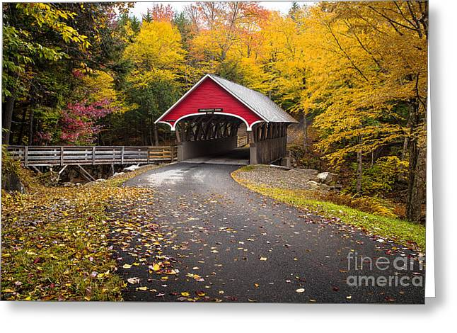 Flume Covered Bridge Greeting Card by Benjamin Williamson