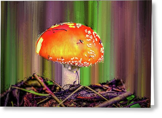 Fly Agaric #g7 Greeting Card