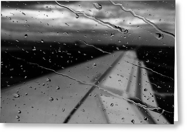 Greeting Card featuring the photograph Fly Away On A Rainy Day by Chris Feichtner
