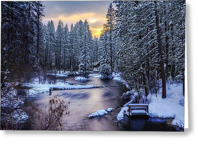 Fly Fisherman On The Metolius Greeting Card by Cat Connor
