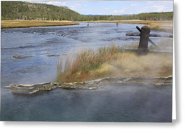 Fly Fishing And Geyser  Greeting Card by Gayle Johnson