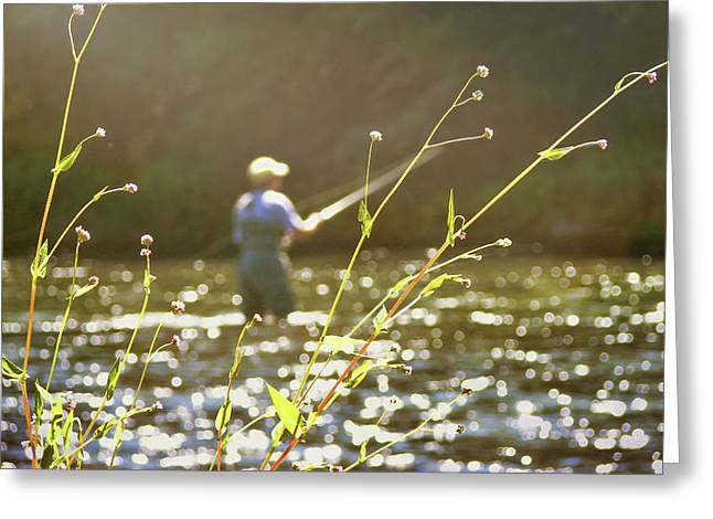 Fly Fishing Greeting Card by JAMART Photography