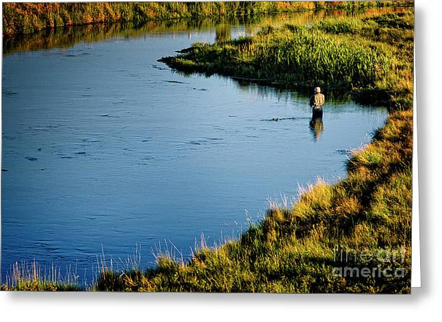Greeting Card featuring the photograph Fly Fishing  by Scott Kemper