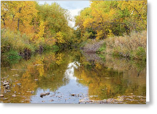 Fly Fishing Stream Reflections Greeting Card by James BO Insogna