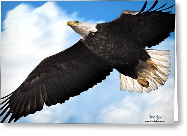 Fly Like An Eagle Greeting Card by Rick Fisk
