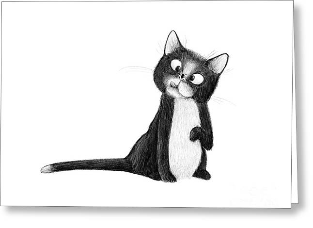 Fly On Cat Greeting Card