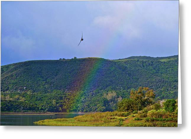 Fly Over The Rainbow Greeting Card