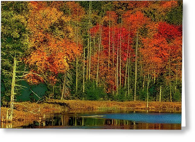 Fly Pond Abstract Greeting Card