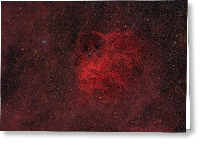 Flyihng Owl Nebula Greeting Card by Brian Peterson