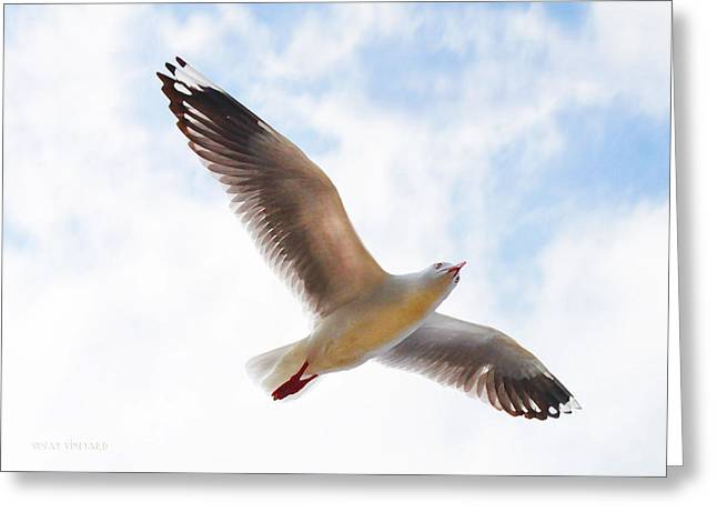 Flying Away From The Madness Greeting Card