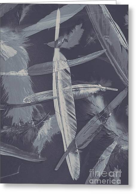Flying Featherabstract Background Greeting Card