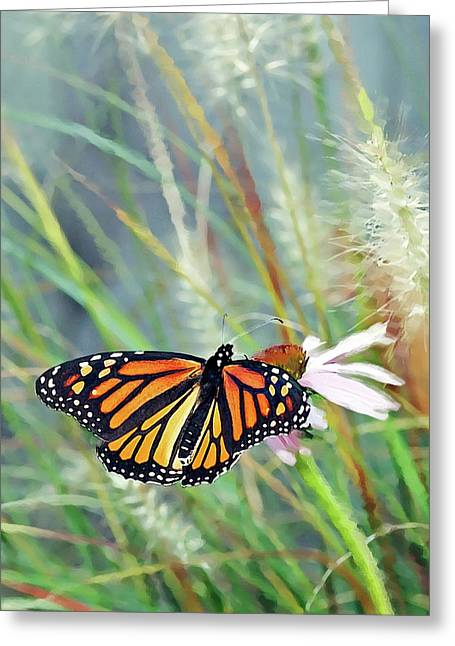 Fountain Digital Art Greeting Cards - Flying Flower Greeting Card by Betty LaRue