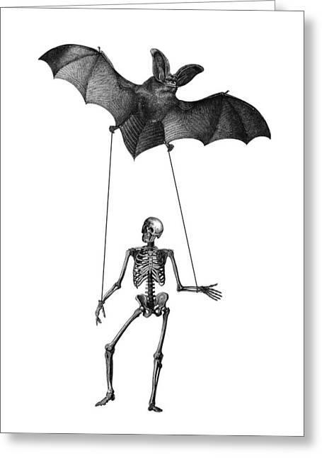 Flying Bat With Skeleton On A String Greeting Card