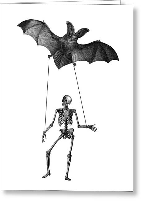 Flying Fox With Skeleton On A String Greeting Card by Madame Memento