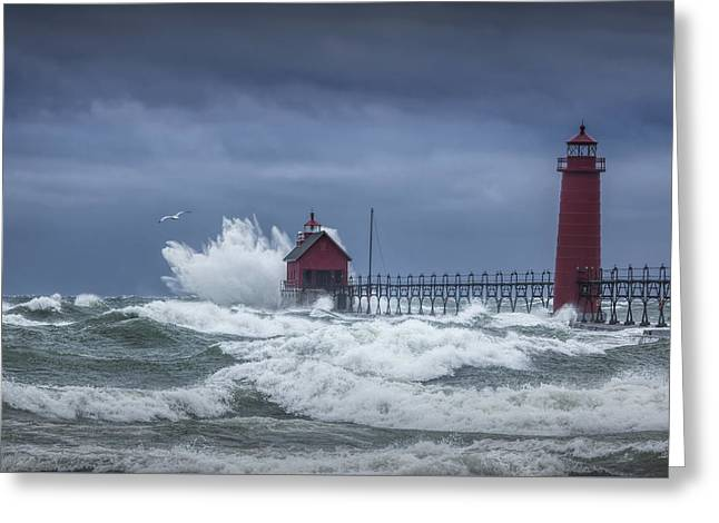 Flying Gull In A November Storm On Lake Michigan By The Grand Haven Lighthouse Greeting Card