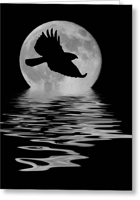 Greeting Card featuring the photograph Flying Hawk 1 by Shane Bechler