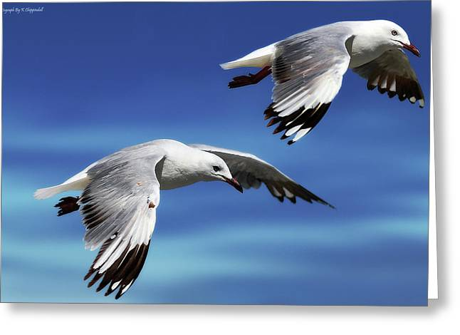 Flying High 0064 Greeting Card by Kevin Chippindall