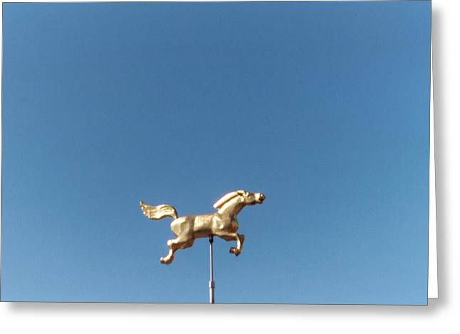 Flying Horse Chattanooga Greeting Card by Jake Hartz