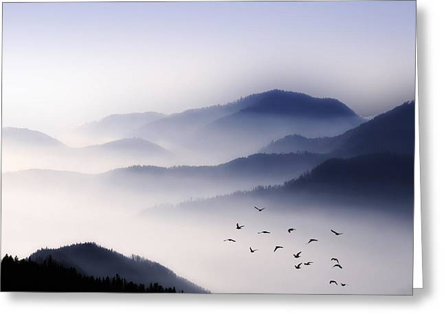 Flying Over The Fog Greeting Card