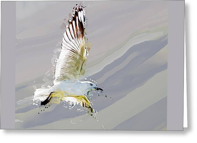 Flying Seagull Abstract Sky Greeting Card by Elaine Plesser