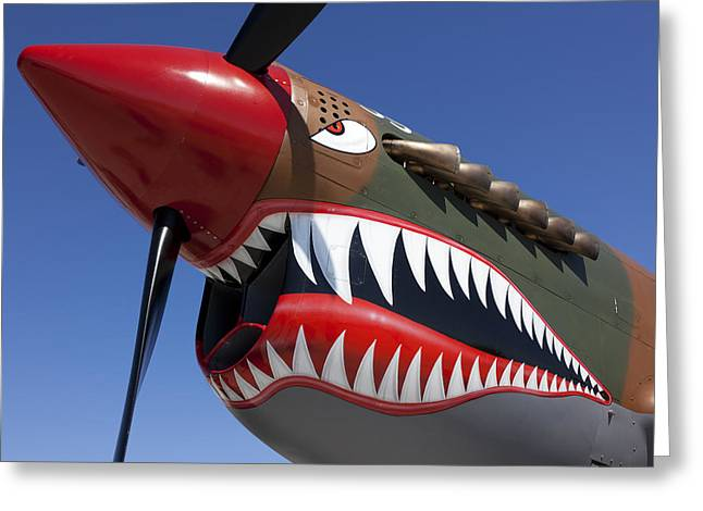 Nose Art Greeting Cards - Flying tiger plane Greeting Card by Garry Gay