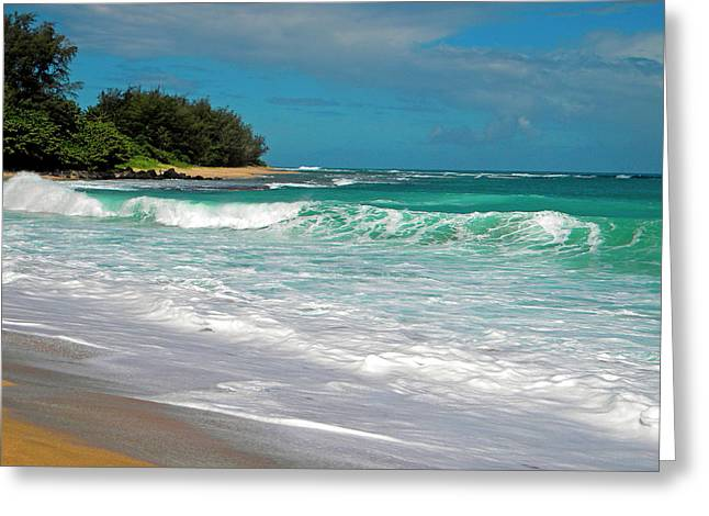 Foamy Surf Greeting Card by Frank Wilson