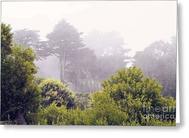 Greeting Card featuring the photograph Fog At Lands End by Cindy Garber Iverson