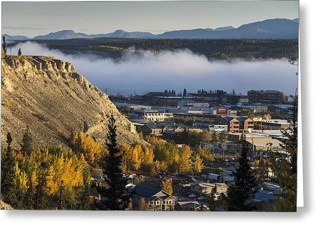 Fog Hangs Over The Yukon River Greeting Card by Mark Newman