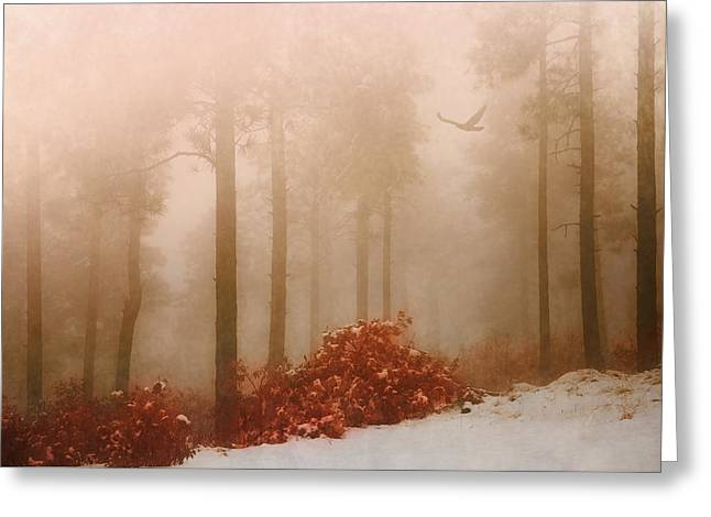 Fog IIi Greeting Card