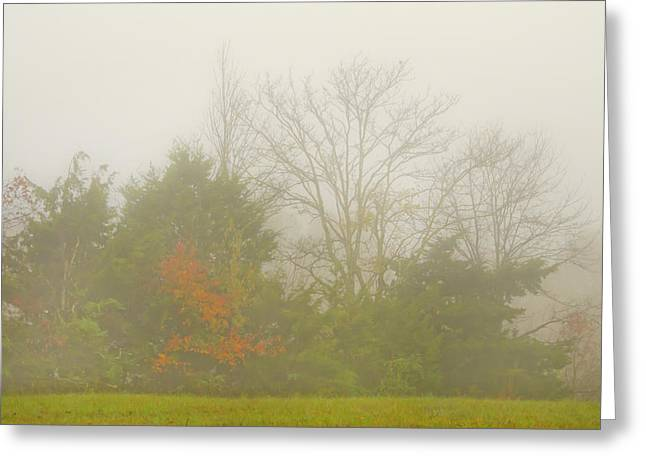 Fog In Autumn Greeting Card