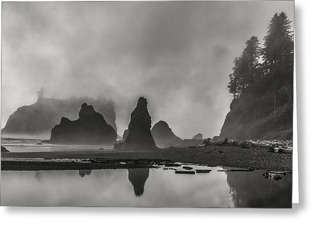 Fog In Force Greeting Card by Jon Glaser