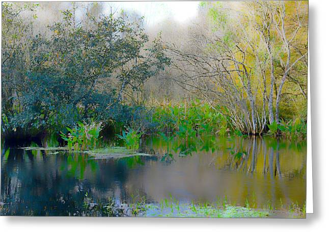 Foggy Swamp Greeting Card